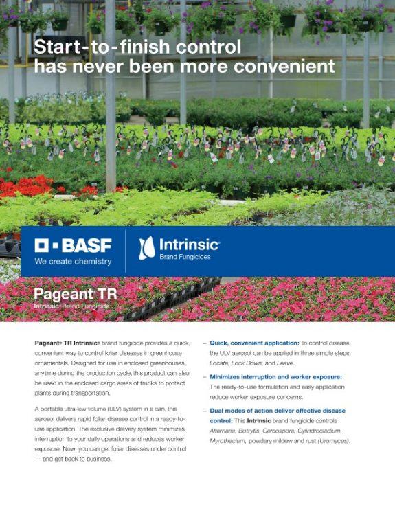 BASF Ornamentals Plant Care   Ornamentals Disease Management